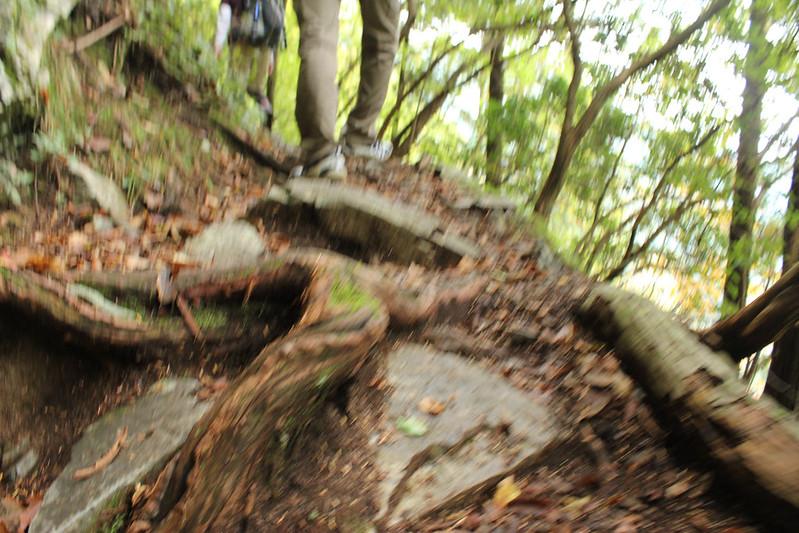 20101023-川苔山-0060.jpg