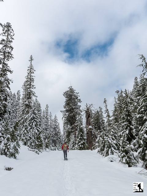 Kelcema Lake Snowshoe