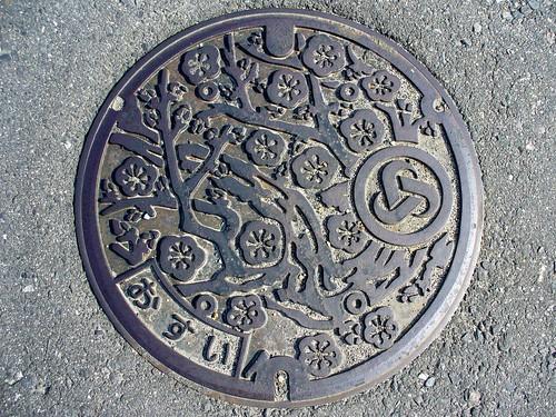 Asahi Mie, manhole cover (三重県朝日町のマンホール)