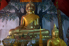 Buddha with Bodhi tree in the background