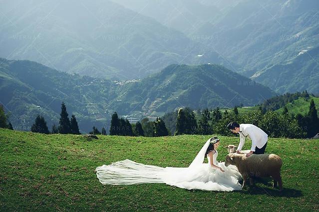婚紗,婚紗攝影,婚紗旅拍,婚紗照,旅拍,南投婚紗,青青草原,高山婚紗,清境婚紗,台灣旅拍,Wedding,Weddingphotography
