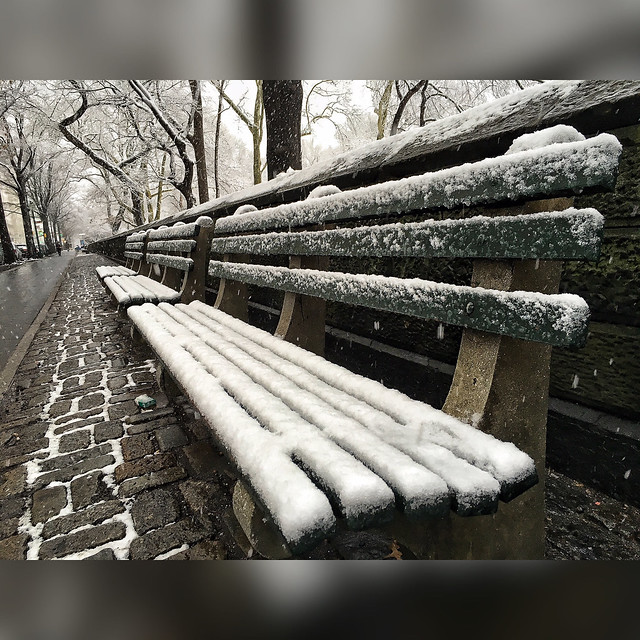Snowy morning in Central Park