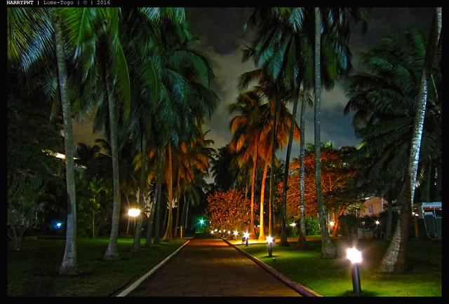 line of palmas