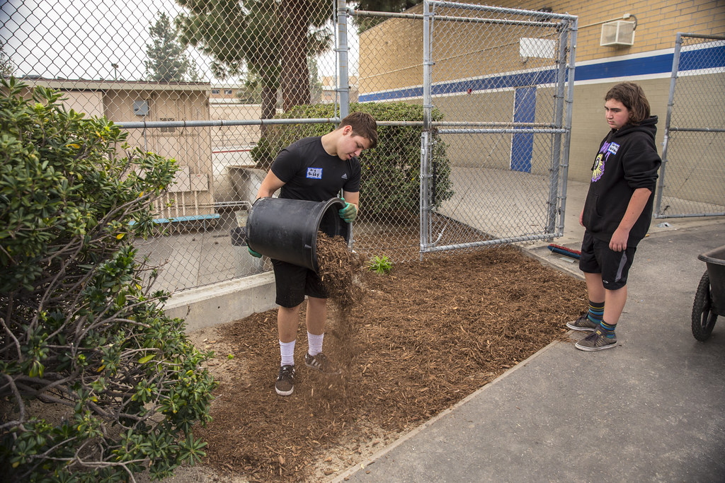 El Camino Real High School Beautification