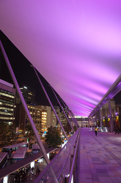 Granroof Tokyo Station Sakura colored lightup 02