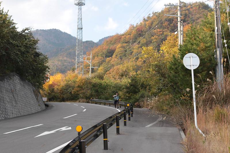 20141122-武奈ヶ岳&京都ライトアップ-0496.jpg