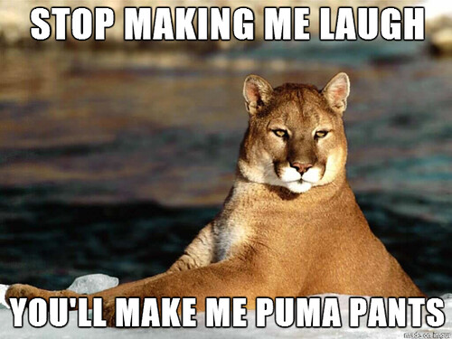 puma-pants-unlawful-humor-FB