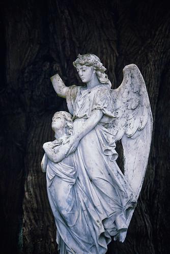 new newzealand broken cemetery statue angel geotagged town peace zealand violence spiritual symbolic wanganui nzl manawatu dannevirke kurdulija manawatuwanganui geo:lat=4020530530 geo:lon=17610031580