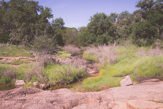 Enchanted Rock-26
