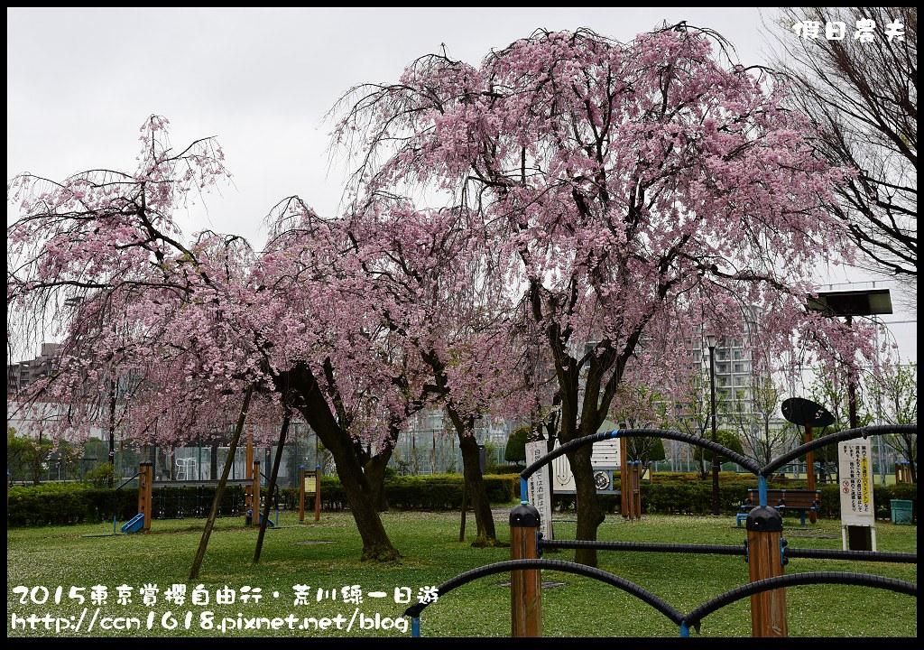 2015東京賞櫻自由行‧荒川線一日遊DSC_4267