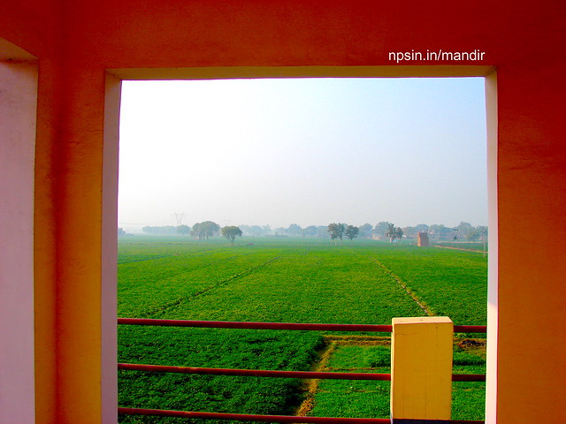 Beautiful Green view of potato framing of village Kithaut from the second floor balcony of the temple.