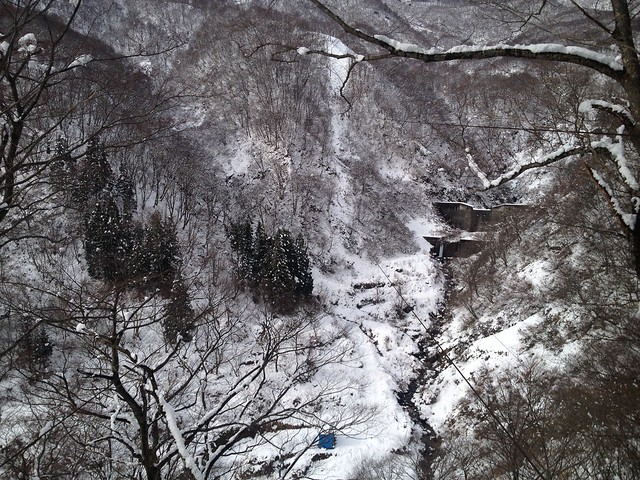 土蔵岳 支尾根から上原谷ケーブル