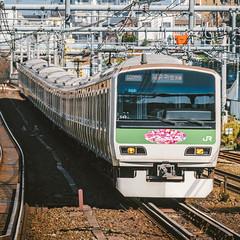 JR EAST E231-500 Series_549