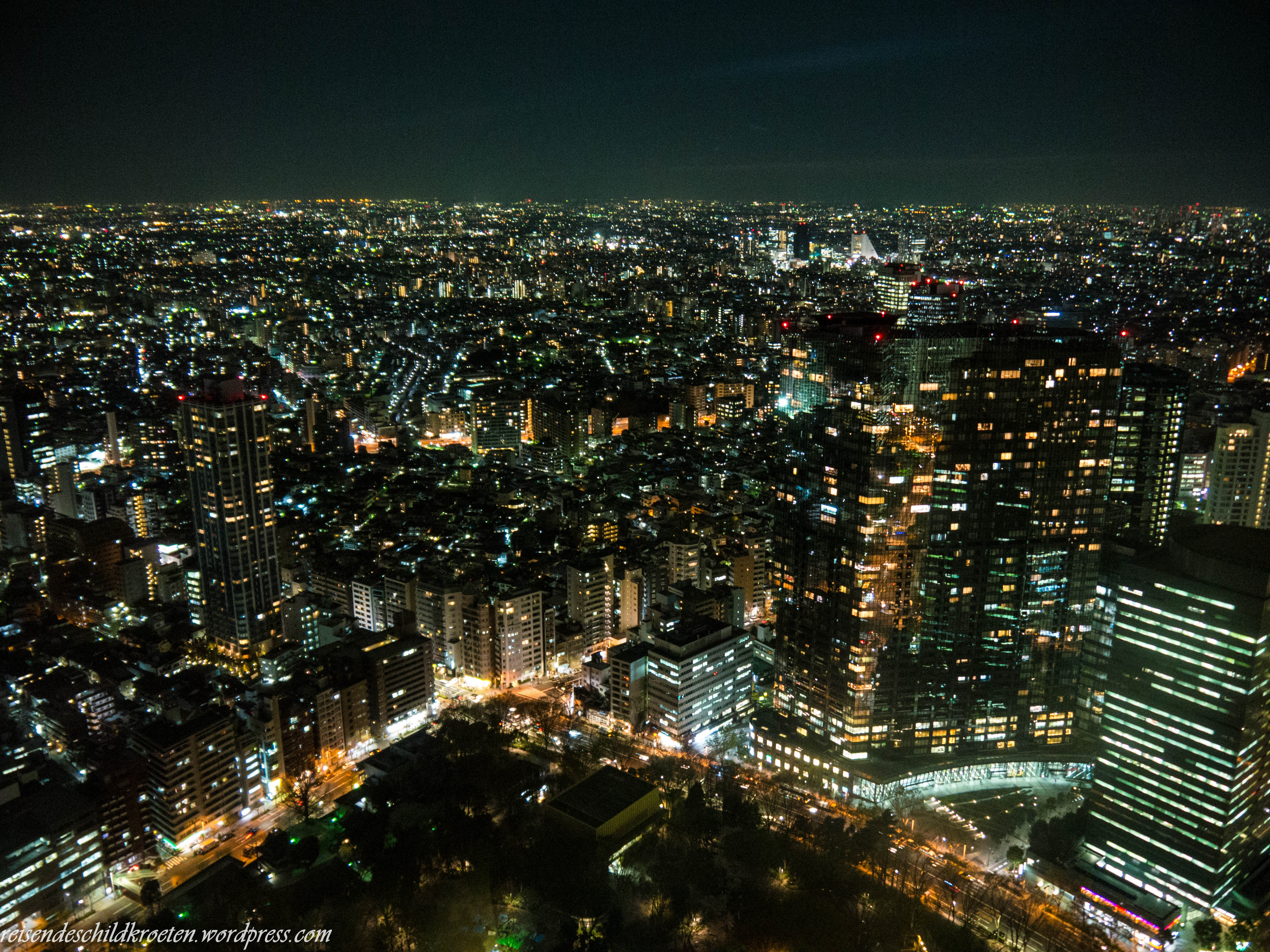 Tokyo Metropolitan Government Building Views