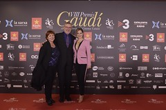 Catifa vermella dels VIII Premis Gaudí