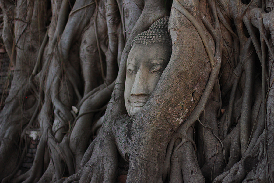 Wat-Maha-That_04