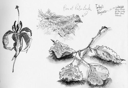 Sketchbook #94: Last Days of My Lilies