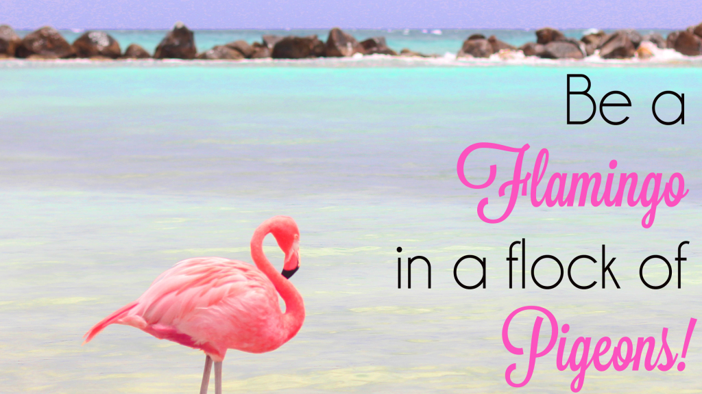 Be-a-Flamingo-desktop-wallpaper-1024x576