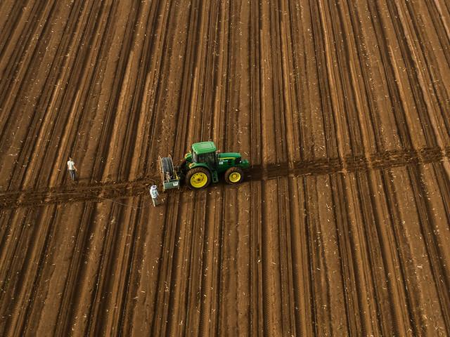 Laying irrigation lines in Ein Harod