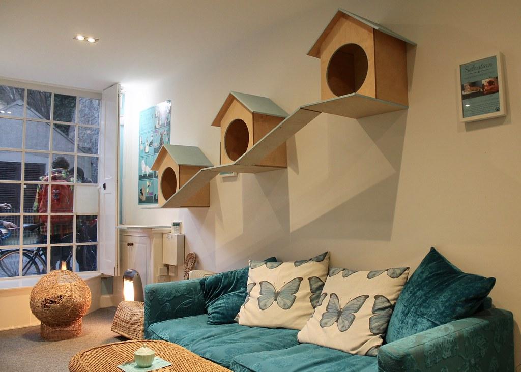 Maison De Moggy, Edinburgh