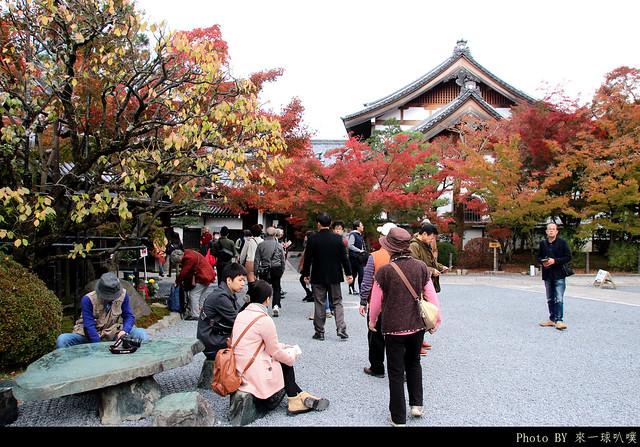 京都-永觀堂028
