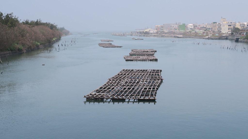 台南將軍漁港 (40)