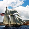 It's #tallshiptuesday! This week we are featuring @privateerlynx a naval schooner built as a replica of the historical vessel who played a major role in the War of 1812. #tallship #sailtraining #sailing #warof1812 #history