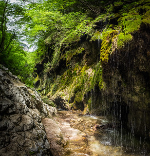 Valle delle Ferriere - Amalfi, Italy - Landscape photography