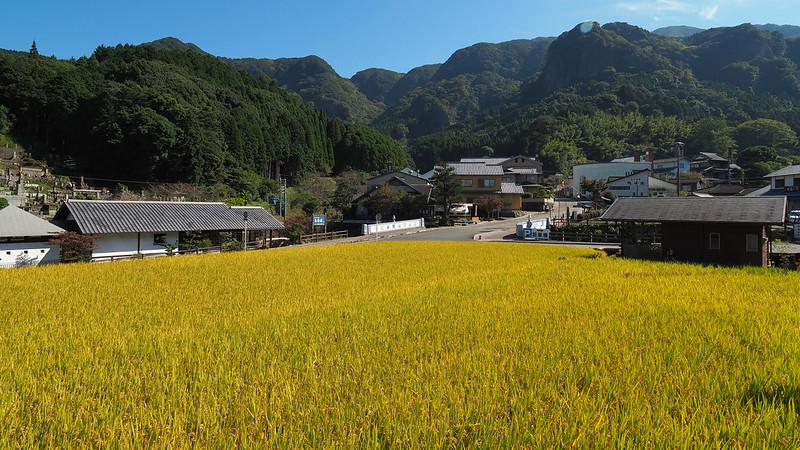 伊萬里|JAPAN 日本 Kyushu