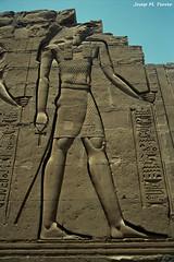 EL DÉU HORUS (Egipte, agost de 2000)