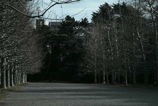 2016年2月21日新宿御苑-28