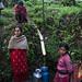 Water - Saurpani, Nepal by Maciej Dakowicz