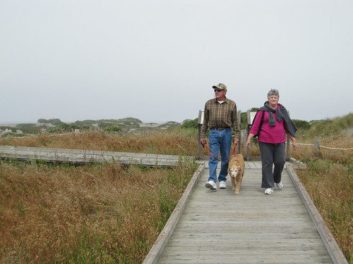 Take a walk on the boardwalk tpo the OHV overlook. Samoa Dunes Recreation Area is dog friendly.