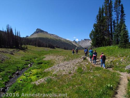 Reentering Bonneville Pass, Shoshone National Forest, Wyoming