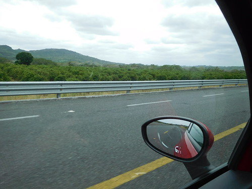 road travel plants tree fruit mexico driving produce travelogue