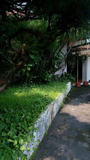 Dijual Rumah Luas Nyaman & Asri Hitung Tahan di Jaka Permai Bekasi (6)