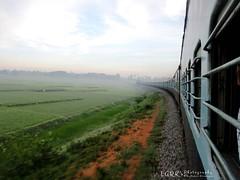 IR 16206 - Mysore - Talguppa Intercity Express