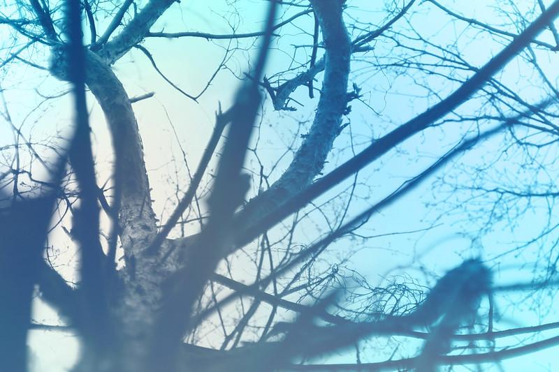 blur-dreamy-texture-texturepalace-8