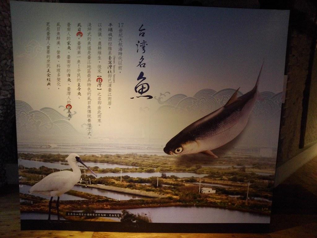 台南市安平區虱目魚主題館 (43)