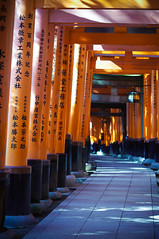 Thousand Torii Gates