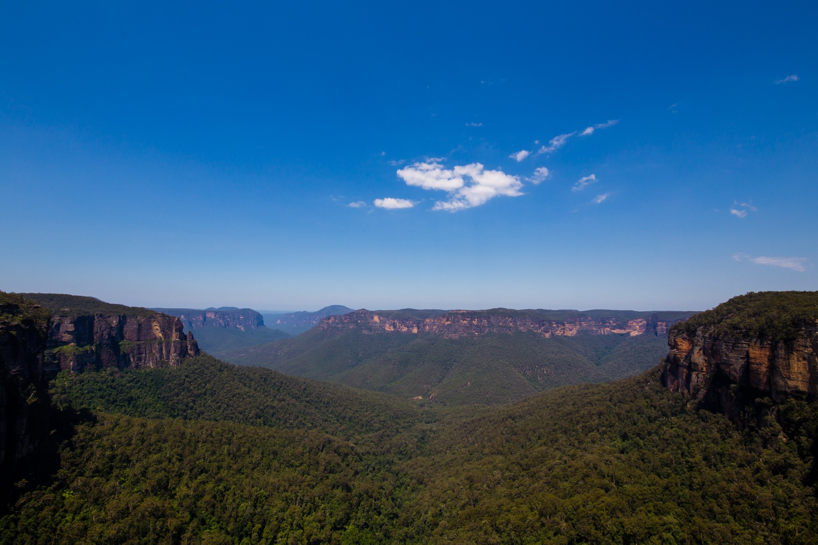 Blue Mountains-8357