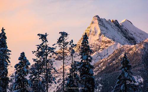 winter panorama snow canada rock fog pine forest sunrise landscape rockies glow bc britishcolumbia invermere mtbrewer pentax60250mm pentaxk3