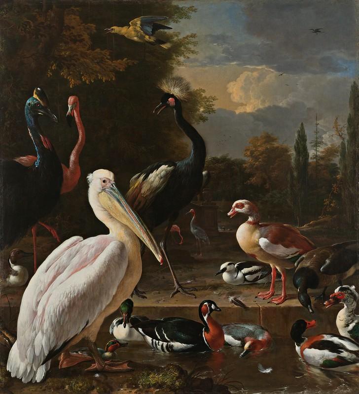 Melchior d'Hondecoeter - Een pelikaan en ander gevogelte bij een waterbassin, bekend als 'Het drijvend veertje' (1680)