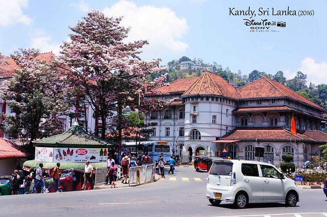 2016 Sri Lanka - Kandy 01