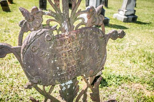 Bush River Baptist Church and Cemetery-008