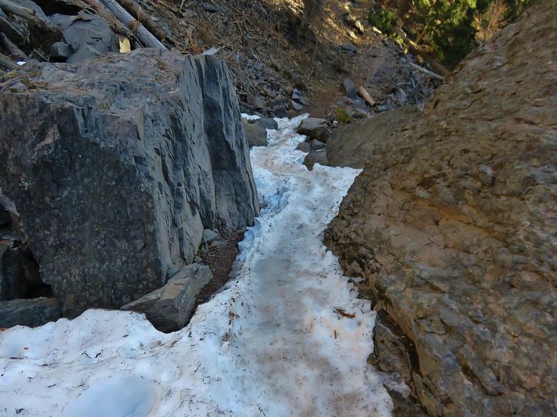 Tamanawas Falls Trail