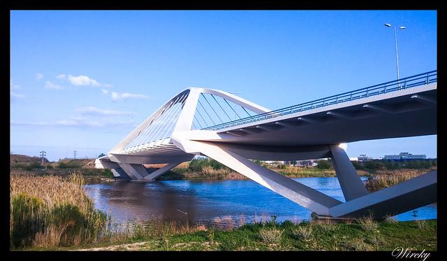 Puente Nelson Mandela Barcelona