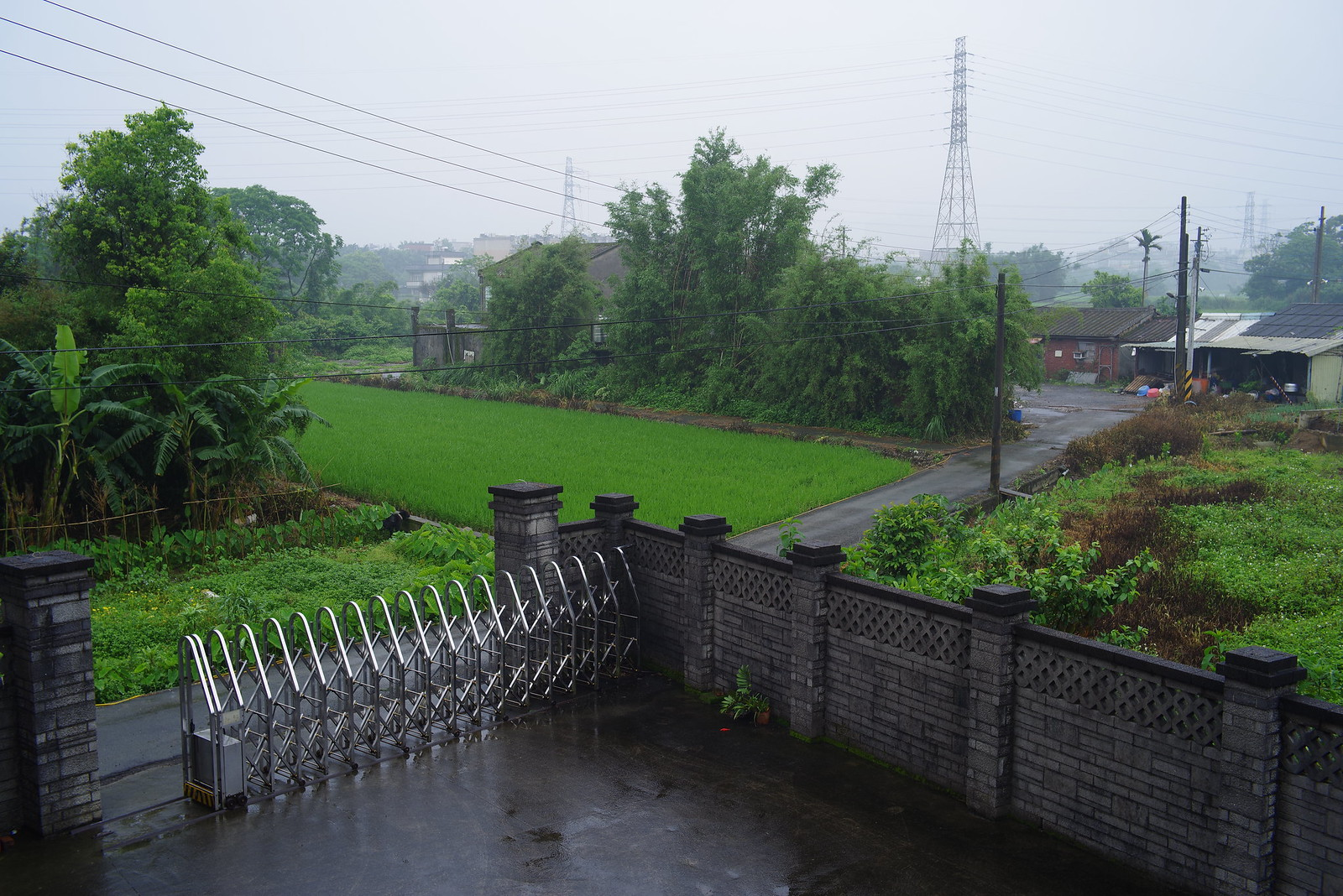 下雨天 , K-1與M42老鏡試拍