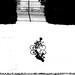 P3700784_edited-1 il  ciclista solitario !!! by gpaolini50
