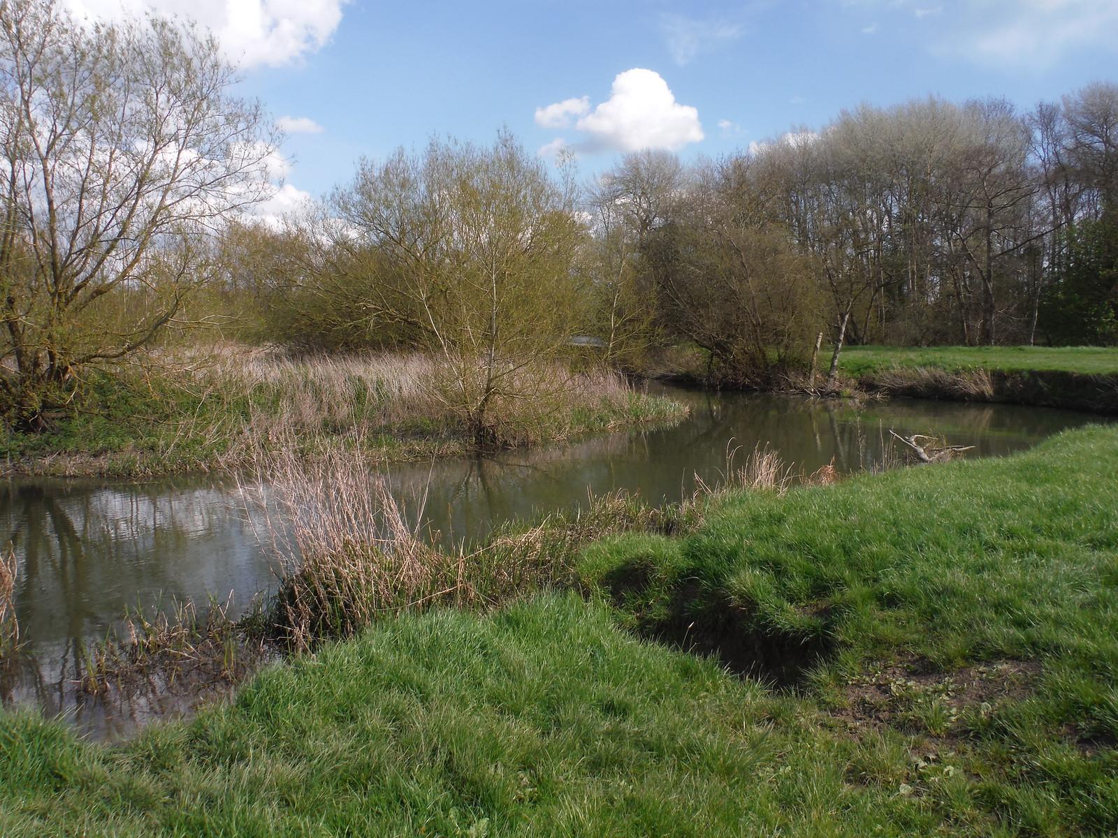 Thame River, Dorchester-on-Thames SWC Walk 44 - Didcot Circular